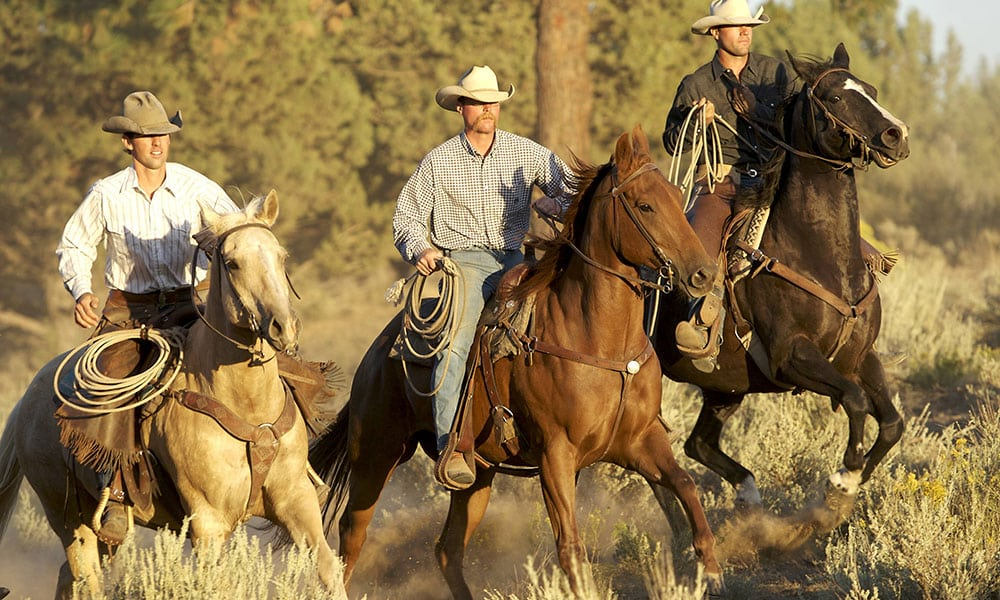 Maremma - Cowboys