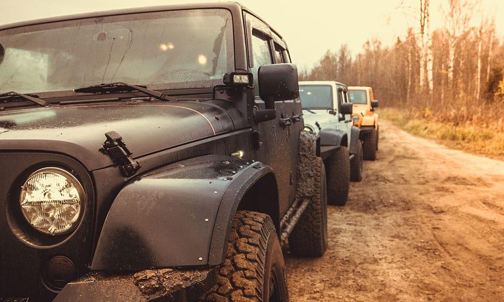 Maremma - Jeep